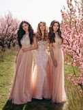 Beautiful women in luxurious dresses posing among flowering peach trees. Fashion outdoor photo of beautiful women in luxurious dresses posing among flowering stock image