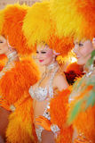 Beautiful women in orange fake fur Stock Photography