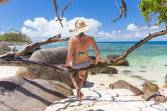 Beautiful women relaxing on tree branch at picture perfect tropical beach. Royalty Free Stock Image