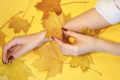 Beautiful women`s hands on paper yellow background, autumn hand care concept stock photos