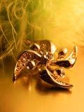 Beautiful women's  pendant brooch Stock Photo