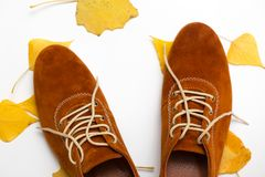 Beautiful women shoes. Beautiful female shoes on laces on a white background and autumn leaves stock image