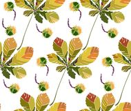 Beautiful wonderful graphic bright floral herbal autumn green chestnut leaves and chestnuts pattern vector illustration. Perfect for textile, wallpapers stock illustration