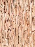 Beautiful wood background Royalty Free Stock Image