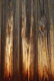 Beautiful wood texture Royalty Free Stock Photo
