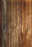 Beautiful wood texture Royalty Free Stock Photos