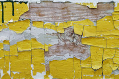 Beautiful wood texture, cracks, old paint Royalty Free Stock Image