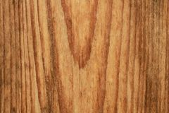 Beautiful wood texture. Wood in a cut stock image