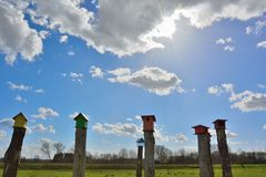 Beautiful wooden bird cages on a wooden pole Stock Images