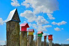 Beautiful wooden bird cages on a wooden pole Stock Image