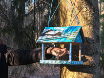 Beautiful wooden birdhouse feeder (nesting box) hanging on a tree in the park. Taking care of animals. Feeding the birds Royalty Free Stock Images