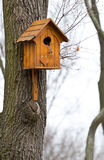 Beautiful wooden birdhouse Royalty Free Stock Photo