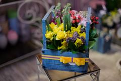 Beautiful wooden box of crimson, white and yellow flowers decorated with green leaves and red berries. Beautiful blue wooden box of the crimson, white and yellow stock photos