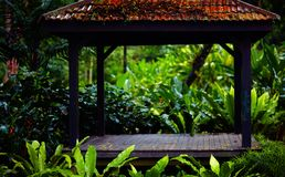 Beautiful wooden garden house in rainy forest among tropical plants Royalty Free Stock Images