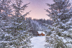 Beautiful wooden hut in a  forest Royalty Free Stock Photo