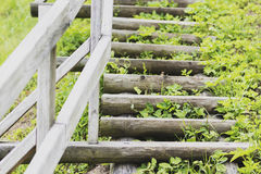 Beautiful wooden ladder leads up the hill augsup Stock Image