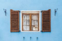 Beautiful wooden painted window with brown frames and white curtains and a cat and an orange wooden opened shutters and stock photos