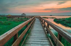 Beautiful wooden path on the Venice lagoon stock images