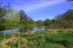 Beautiful woodland lake in the Hever Countryside. Surrounded by green trees and set against a blue sky stock photo