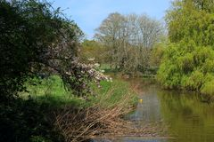 A beautiful woodland scene in the Hever countryside. With green trees and a small lake stock photos