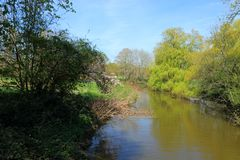 A beautiful woodland scene in the Hever countryside. With a small lake set against a clear blue sky stock images