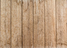 ิbeautiful woodnen background. Wooden panel wall interior background Stock Images