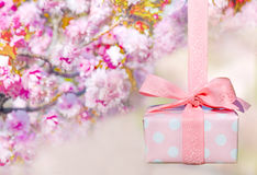 Beautiful wrapped gift box with spring sakura blossoms Royalty Free Stock Photography