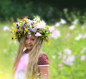 Beautiful wreath from meadow grasses and flowers Royalty Free Stock Image