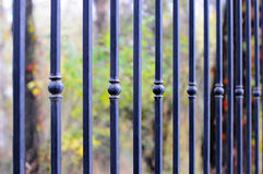 Beautiful wrought fence. Image of a decorative cast iron fence. metal fence. beautiful fence with artistic forging Stock Image
