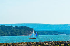 Beautiful yachts in the bay, sailing on the ocean, clear sky,  Royalty Free Stock Images