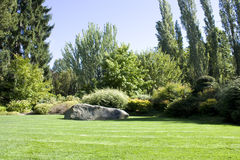Beautiful yard with lush greenery. A beautiful yard with lush greenery and great lawn. A big rock created a good focal point Royalty Free Stock Photos