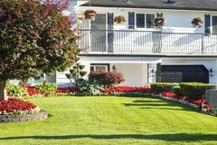 Beautiful Yard. A beautiful residential yard trimmed and in full bloom Stock Image