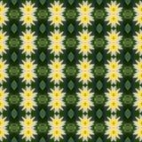 Beautiful of yello lotus flower seamless Stock Photo