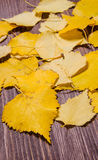 Beautiful yellow autumn leaves isolated on wooden background Stock Photography