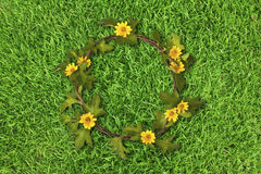 Beautiful yellow flower crown (Daisy) on fresh spring green gras Stock Photography