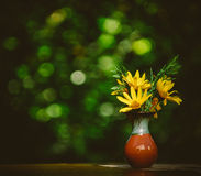 Beautiful yellow flower in vase on table. Beautiful sunflowers on table on bright background Stock Photos