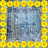 Beautiful yellow flowers on blue background jeans Royalty Free Stock Images