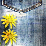 Beautiful yellow flowers on blue background jeans Royalty Free Stock Photos