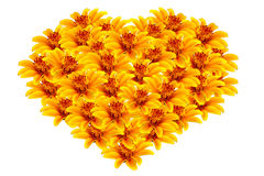Beautiful yellow flowers heart-shaped royalty free stock photography