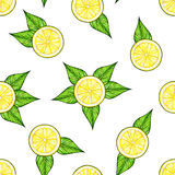 Beautiful yellow lemon fruits with green leaves isolated on white background. Lemon drawing. Seamless pattern Royalty Free Stock Images