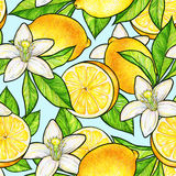 Beautiful yellow lemon fruits and white flowers citrus with green leaves on blue background. Flowers lemon doodle drawing. Seamles. S pattern Stock Photos