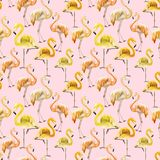 Beautiful yellow and orange flamingo on pink background. Exotic seamless pattern. Watercolor painting. Hand drawn and painted illustration. Fabric, wallpaper Stock Photos