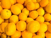 Beautiful yellow natural sweet tasty ripe soft round bright bright tangerines, fruits, clementines. Texture, background stock photo