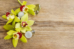 Beautiful yellow orchid flowers on wood Stock Images