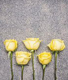 Beautiful yellow rose bouquet in a rustic granite background, lined  row, top view border ,place for text Royalty Free Stock Photography