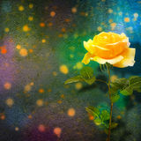 Beautiful yellow rose with green leaves on background Stock Photography