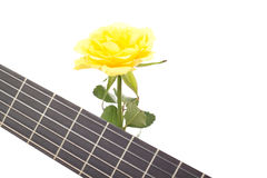 Beautiful rose with guitar Royalty Free Stock Image