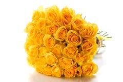 Beautiful yellow rose Royalty Free Stock Photos