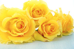 Beautiful yellow roses on rustic wood table. Royalty Free Stock Photography