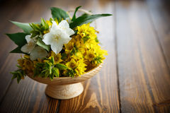 Beautiful yellow summer flowers Stock Images